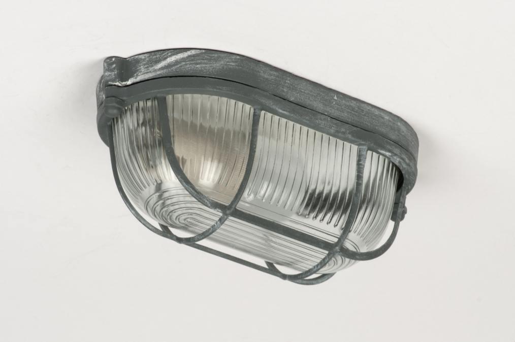 Plafondlamp 10962: Industrie, Look, Grijs, Glas