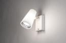 Buitenlamp 14013: modern, staal rvs, kunststof, wit #1