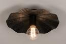 Plafondlamp 74330: landelijk, rustiek, modern, eigentijds klassiek #2