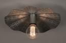 Plafondlamp 74331: landelijk, rustiek, eigentijds klassiek, metaal #2